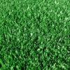Искуственная трава Дюфа Тафт   2 м